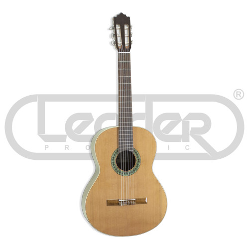 Изображение классической гитары Paco Castillo 201 – Front Left Side View|Leader Promusic