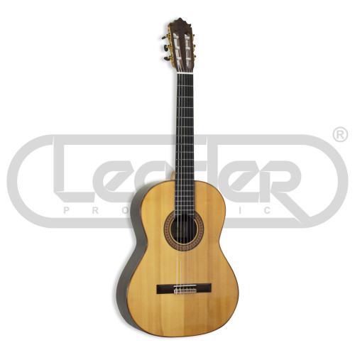 Изображение классической гитары Paco Castillo 215 F – Front Left Side View|Leader Promusic