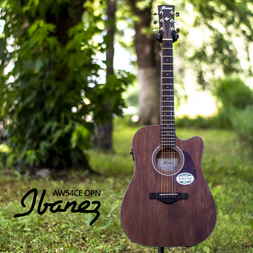Изображение электроакустической гитары Ibanez AW54CE OPN – Front Side View|by Leader Promusic