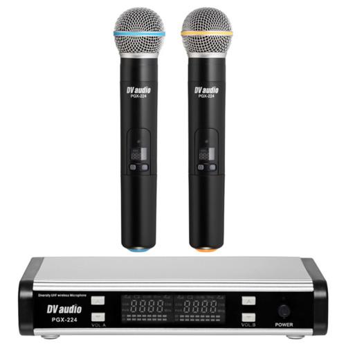 Изображение радиосистемы DV audio PGX-224 Dual – Front Side View|Leader Promusic